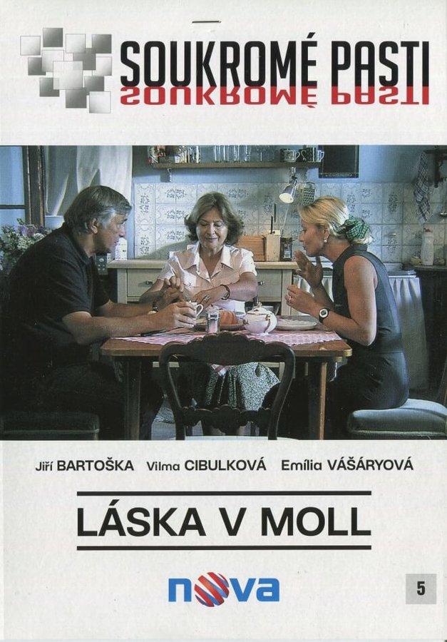 Soukromé pasti - Láska v moll (DVD) (papírový obal)