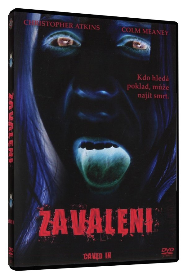 Zavaleni (DVD)