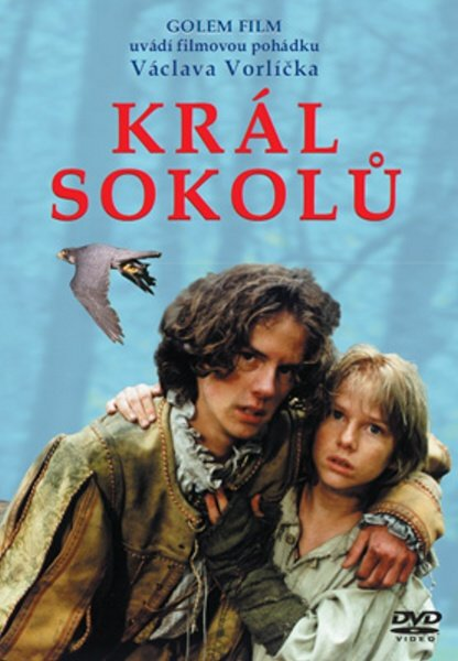 Král sokolů (DVD) (papírový obal)