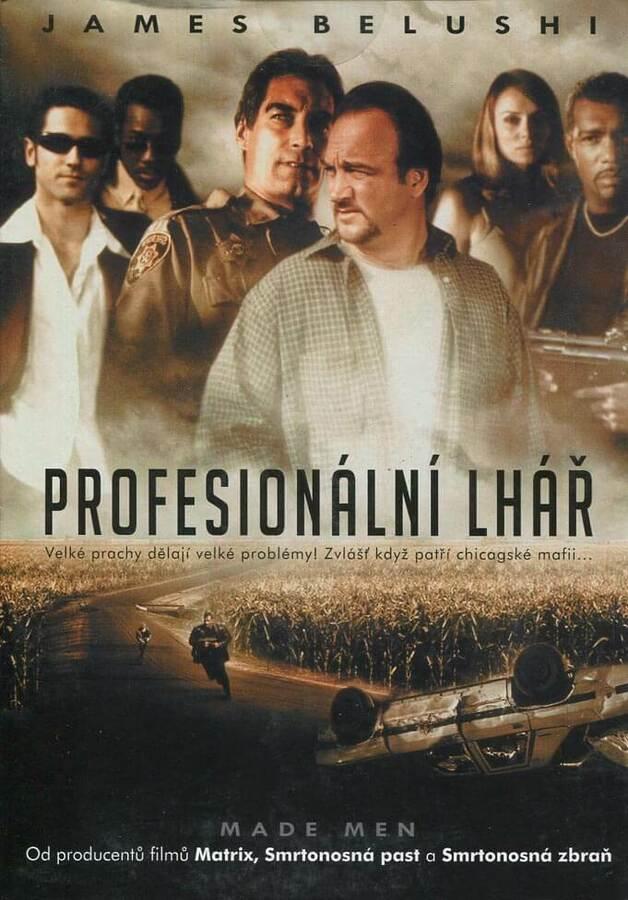 Profesionální lhář (DVD) (papírový obal)