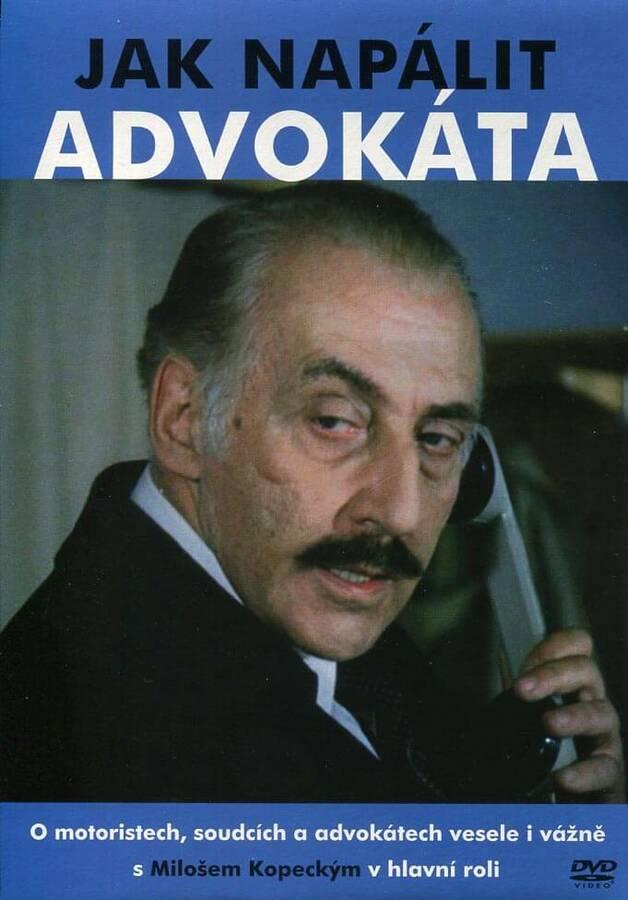 Jak napálit advokáta (DVD) (papírový obal)