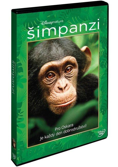 Šimpanzi (DVD) - české titulky
