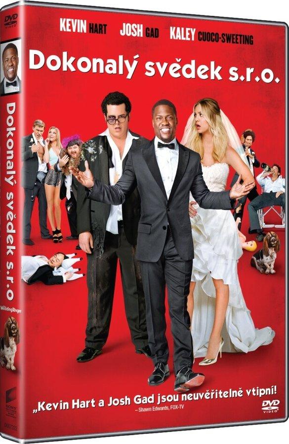 Dokonalý svědek s.r.o. (DVD)
