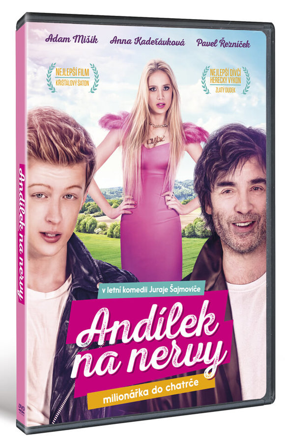 Andílek na nervy (DVD)