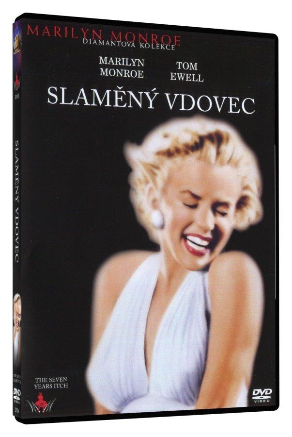 Slaměný vdovec (DVD)
