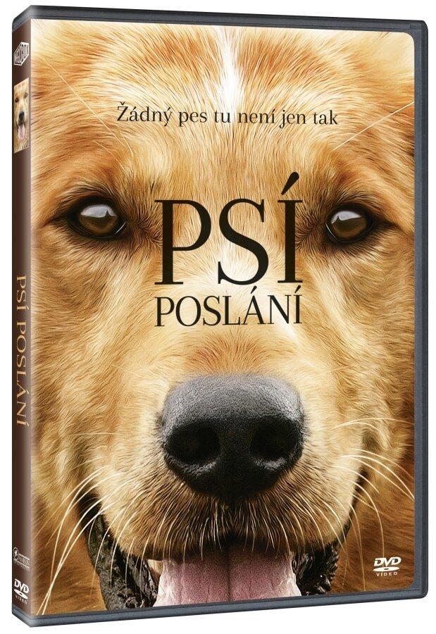 Psí poslání (DVD)