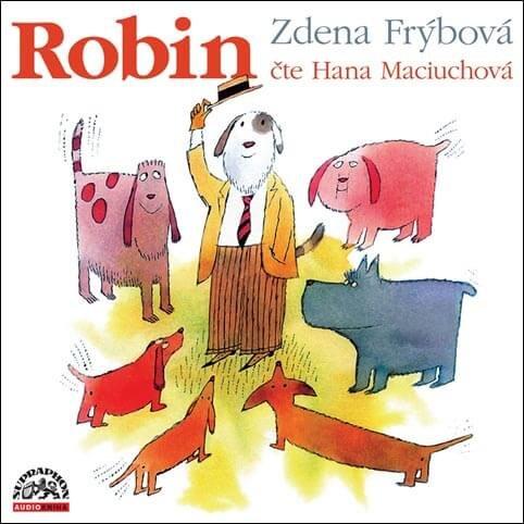 Robin (CD-MP3) - audiokniha